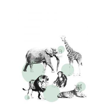 fototapet dyr mintgrønt