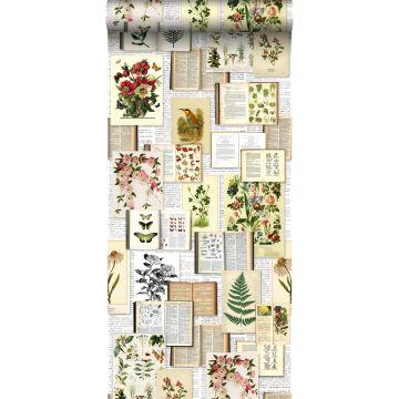 tapet XXL sider fra en botanisk bog lyst beigefarvet, grønt, brunt og okkergult