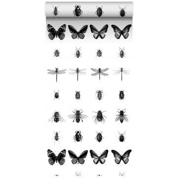 tapet XXL tegninger af insekter sort og hvidt
