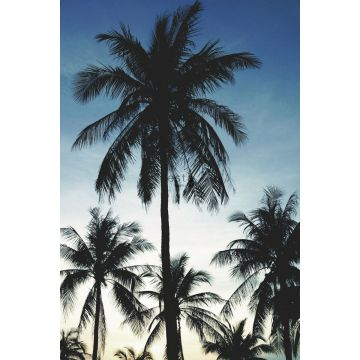 fototapet palmetræer blåt, sort og beige