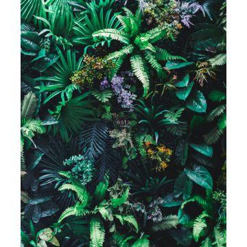 fototapet tropiske planter grønt