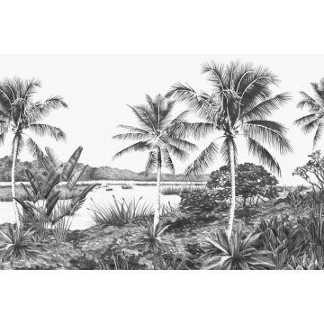 fototapet tropisk landskab med palmetræer sort og hvidt