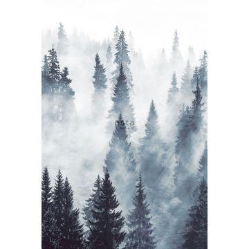 fototapet tåget skov grønt