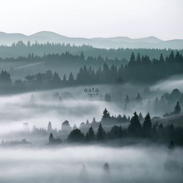 fototapet tågede bjerge grønt