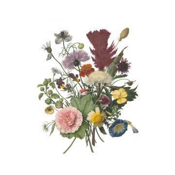 fototapet buket grønt, lyserødt, gul og lilla