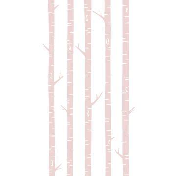 fototapet birkestammer skinnende lyserødt