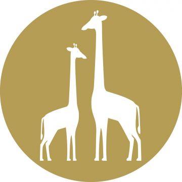 selvklæbende fototapet rundt giraffer okkergult og hvidt