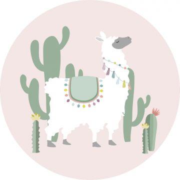 selvklæbende fototapet rundt alpaka lyserødt og grønt