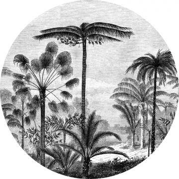 selvklæbende fototapet rundt tropisk landskab med palmetræer sort og hvidt