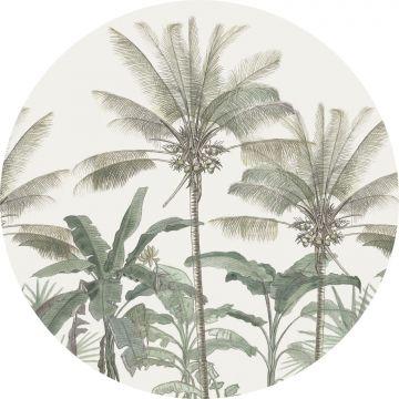 selvklæbende fototapet rundt palmetræer lysebeige og gråligtgrønt