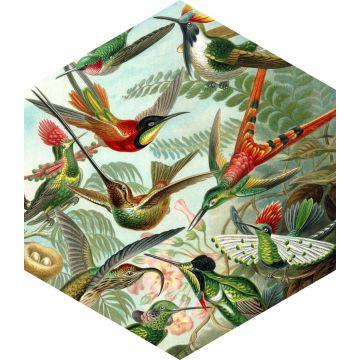 wallsticker fugle tropisk junglegrønt