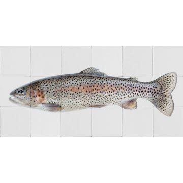 wallsticker fisk varmgråt og lakserosa
