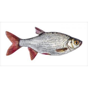 wallsticker fisk gråt og rødt