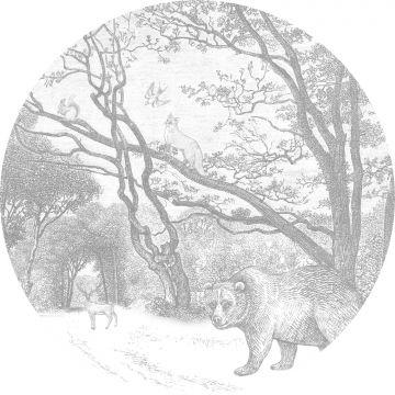 selvklæbende fototapet rundt skov med skovdyr gråt