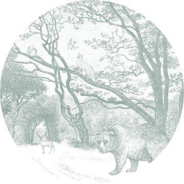 selvklæbende fototapet rundt skov med skovdyr grønt