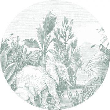 selvklæbende fototapet rundt jungle grønt